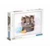 Kiscicák 500 db-os puzzle - Clementoni