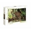 Leopárd 2000 db-os puzzle - Clementoni